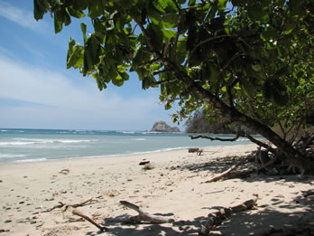 Cabo Blanco beach is the perfect place to rest after walking along the National Park jungle trails
