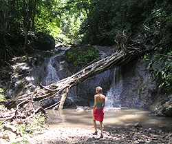 Los Cedros Waterfall
